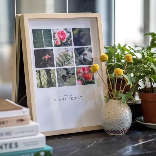 mosaïque art print plant addict