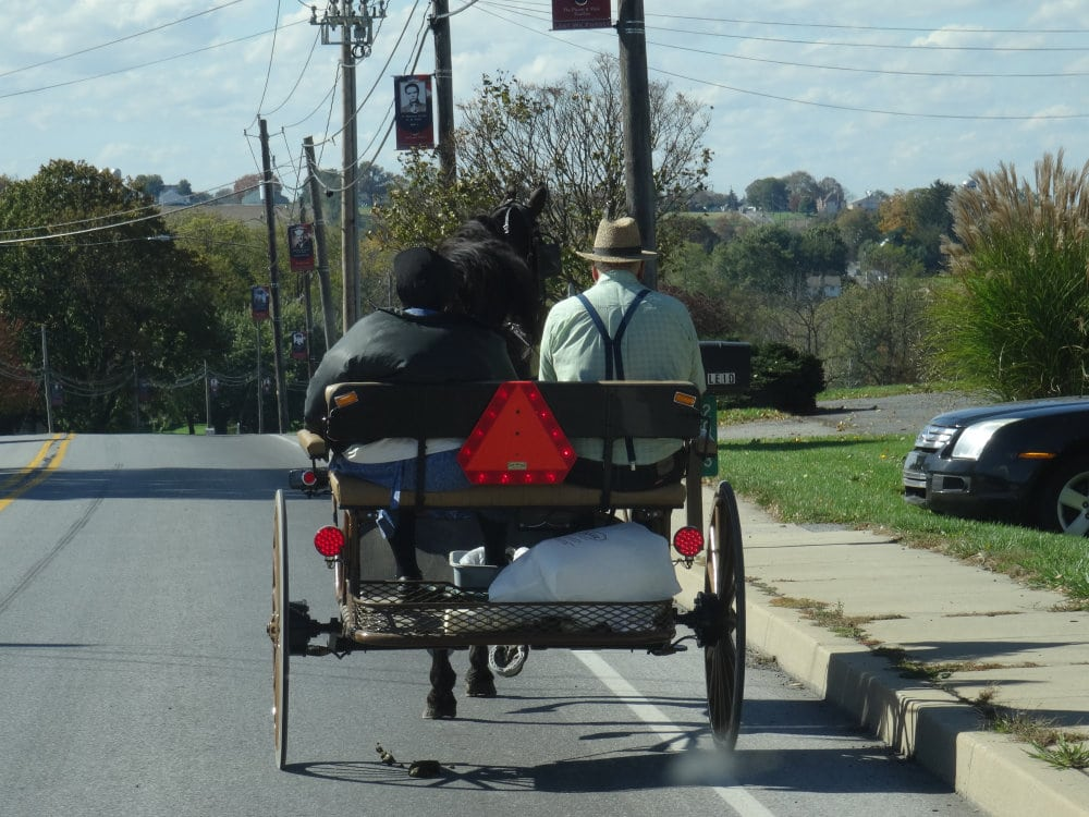 Un couple amish sur son buggy