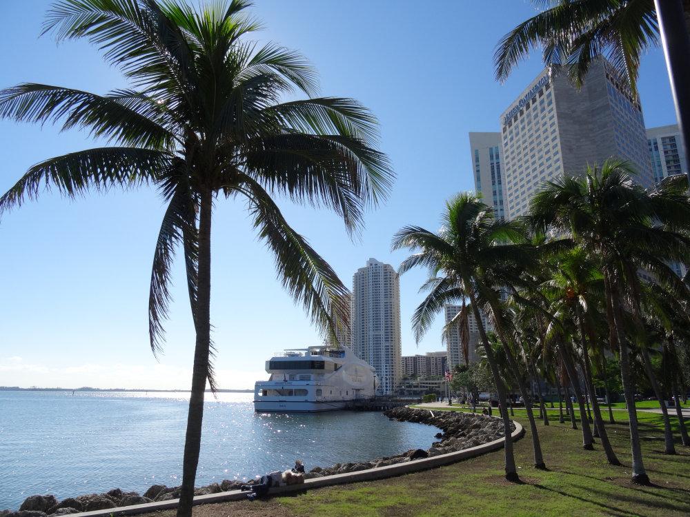 Miami, entre richesse et décadence