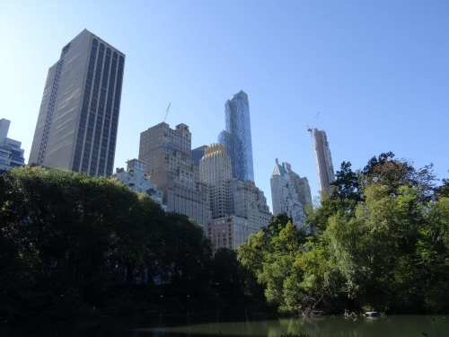 Le poumon vert de New York, Central park
