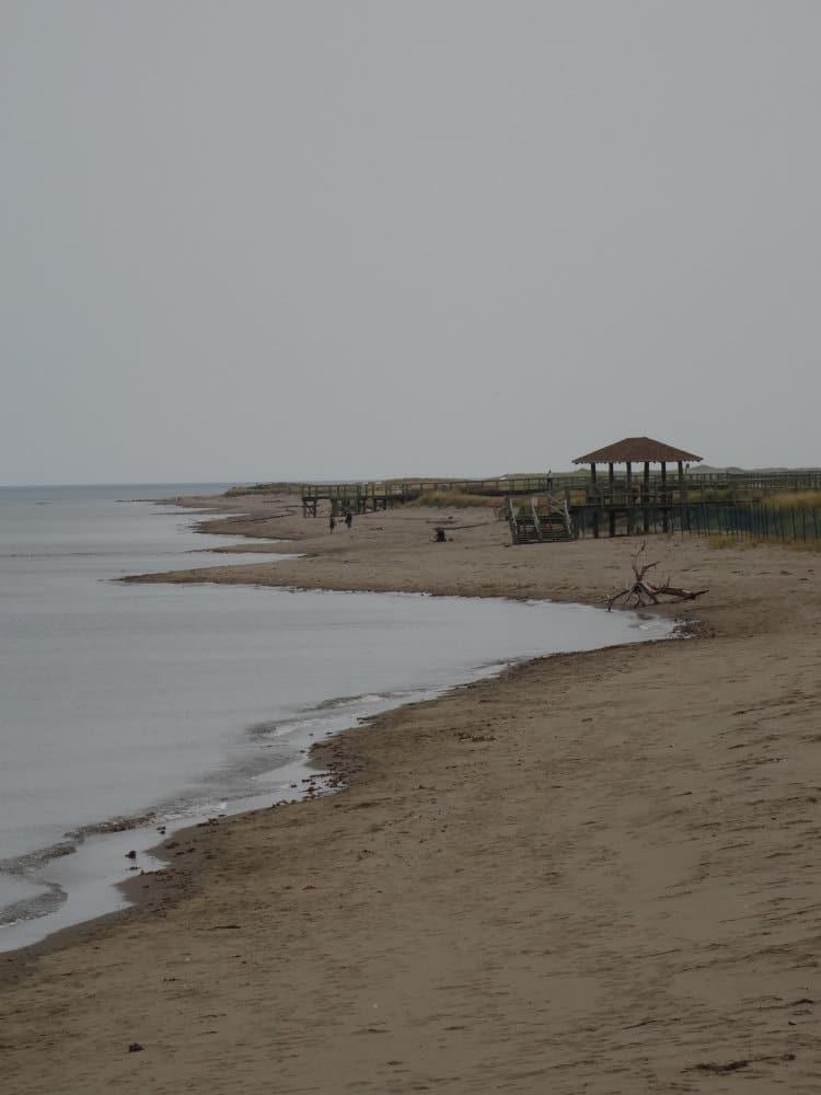 Dune de Bouctouche