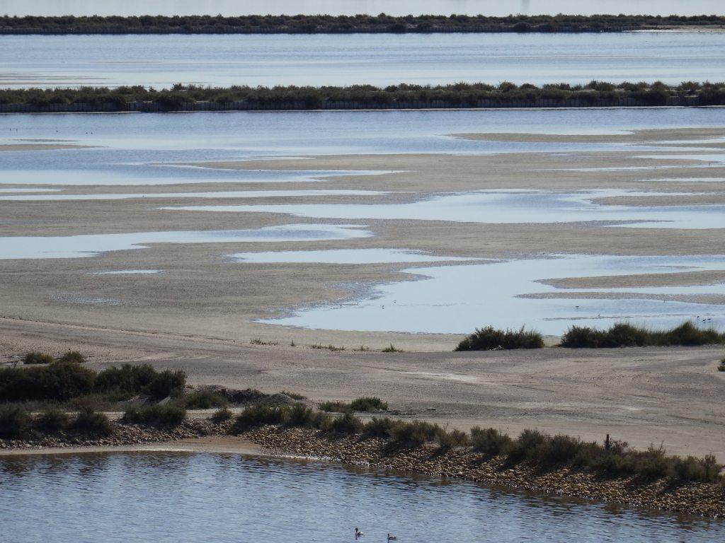 Vue sur les étangs autour d'Aigues-Mortes, Camargue