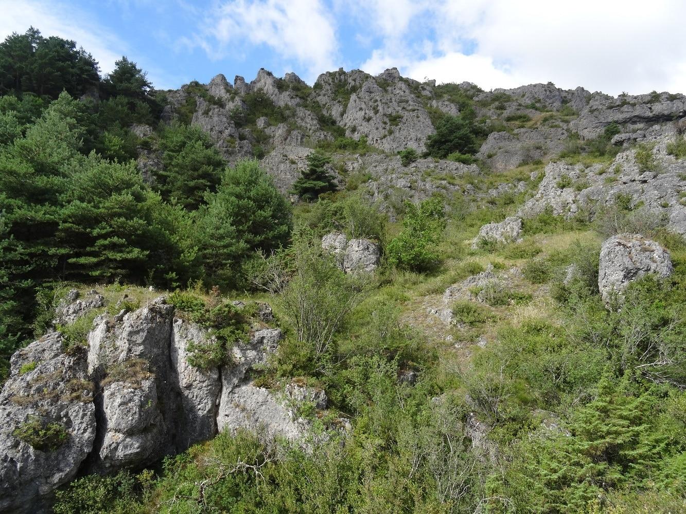 Randonnée au Rajal de Saploum sur les hauteurs de Sainte Eulalie de Cernon