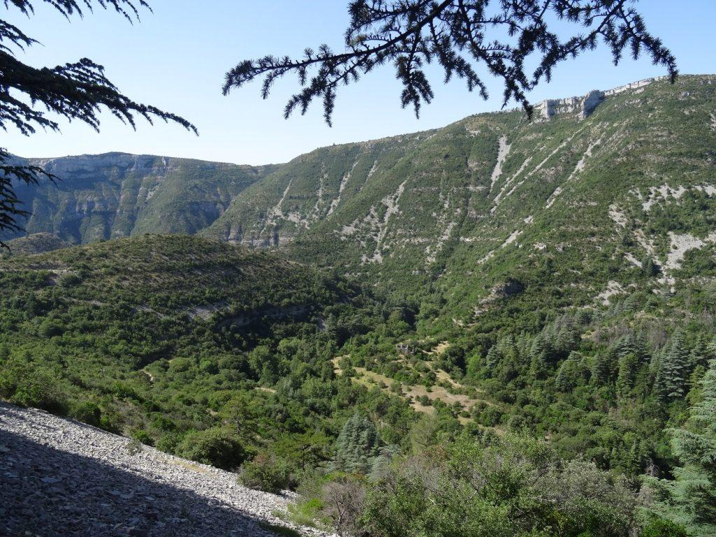 Panorama dans les gorges de la Vis
