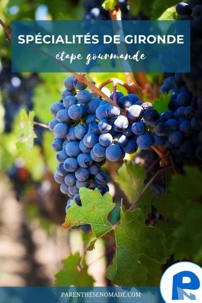 Vigne et vin en Bordelais