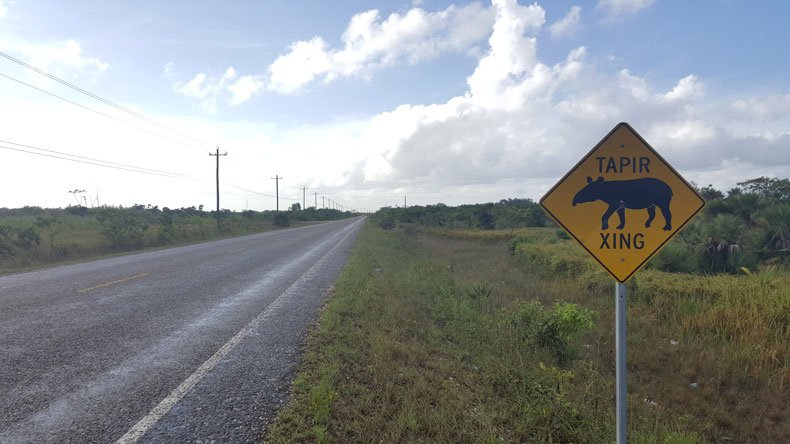 Driving in Belize: What you should know