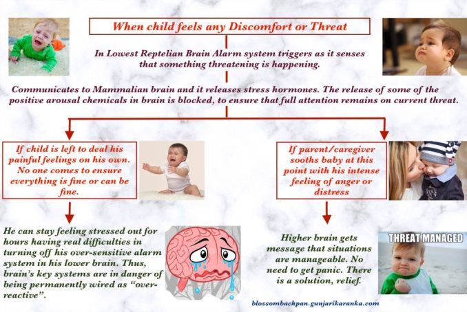 Stress And Your Childs Brain >> Design Your Child S Brain Dr Gunjarika Ranka