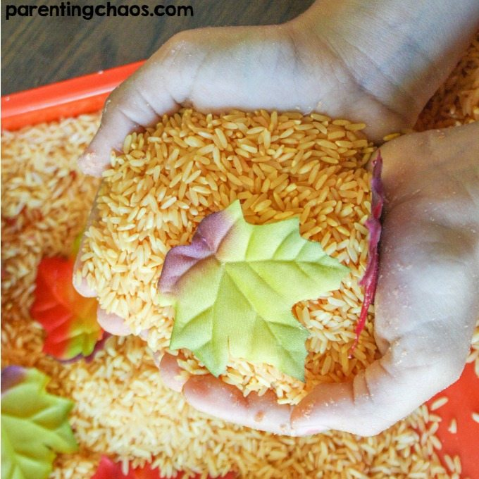 Kids will LOVE this Pumpkin Scented Sensory Rice!