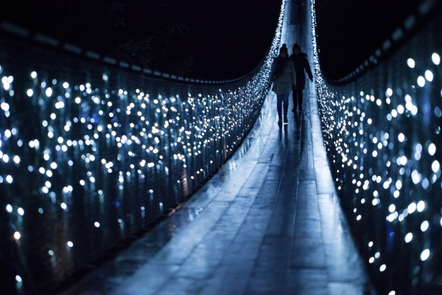 Canyon Lights on Bridge with Silhouettes at CSBP med