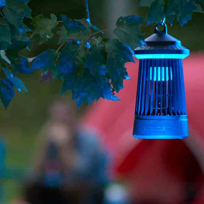 Stinger On-the-Go Insect Zapper for Mosquitos, Flies and More