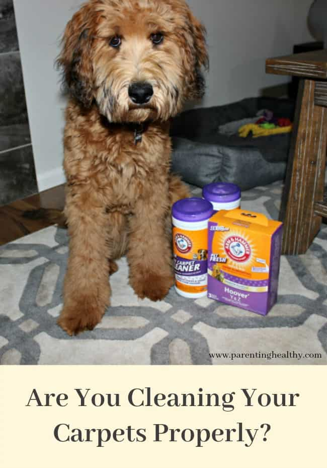 Are You Cleaning Your Carpets Properly?