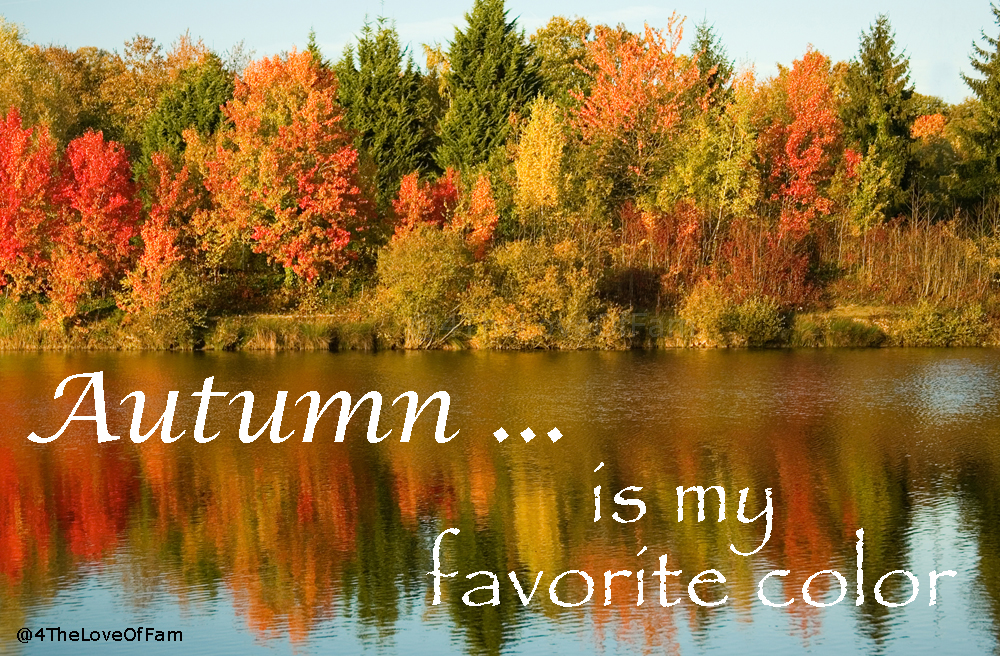.@4TheLoveOfFam Autumn Is My Favorite Color! #fall #autumn #trees