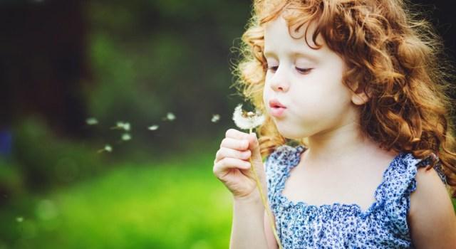 Montessori pédagogie réussite académique