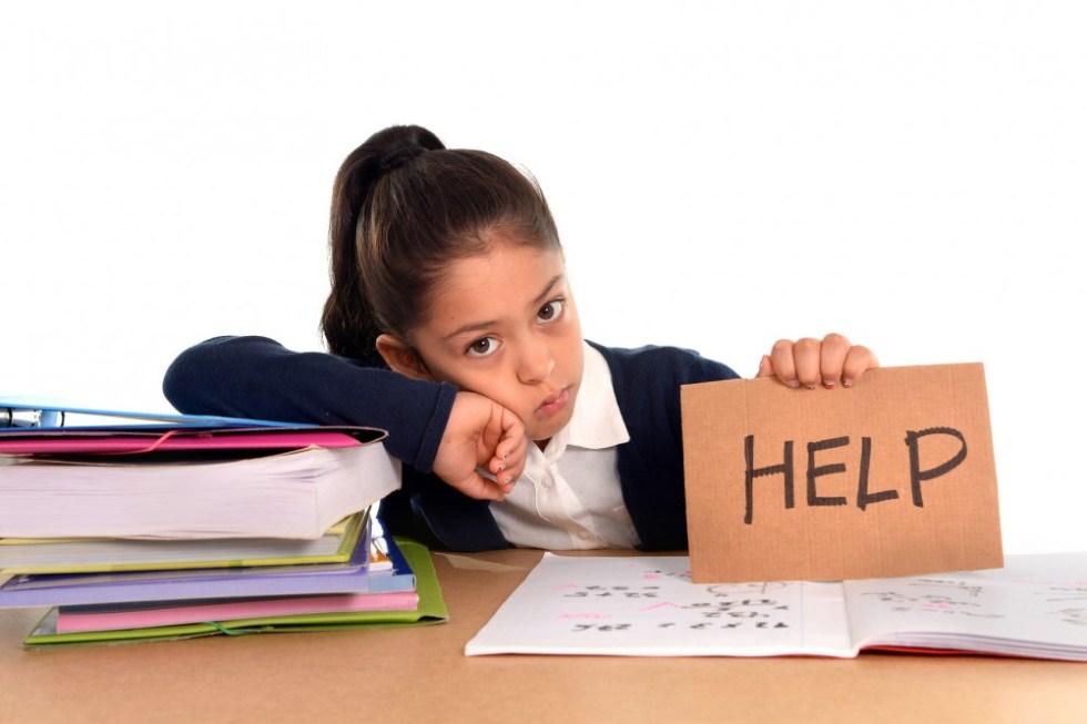 Eleve stress