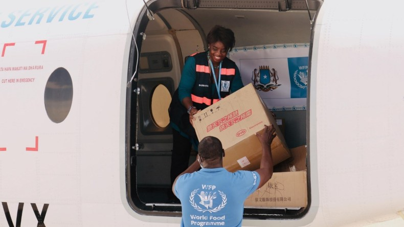 woman handing down box from airplane to WFP employee