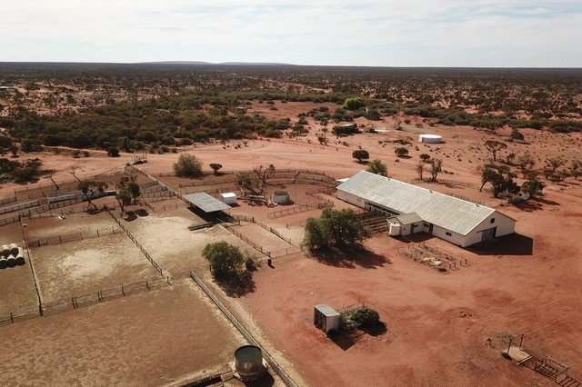 An aerial of a big metal shed and stockyards on dark brown dirt with trees surrounding the area.