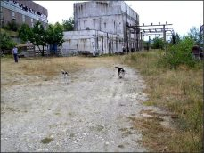 Betonu jako v Gabčíkovu.