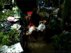 orchid_market_krabi_romana_granatova (29)