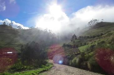 Nebelwald in Chugchilan