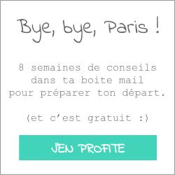 bye-bye-paris
