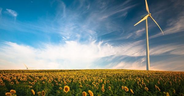 rejoindre une startup de l'environnement, de l'écologie et du développement durable