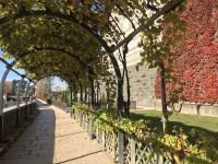 visiter-Pau-201711-jardin-du-chateau-1