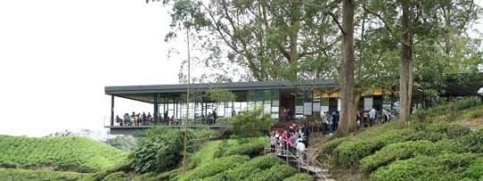 Sungai Palas Boh Tea à Cameron Highlands
