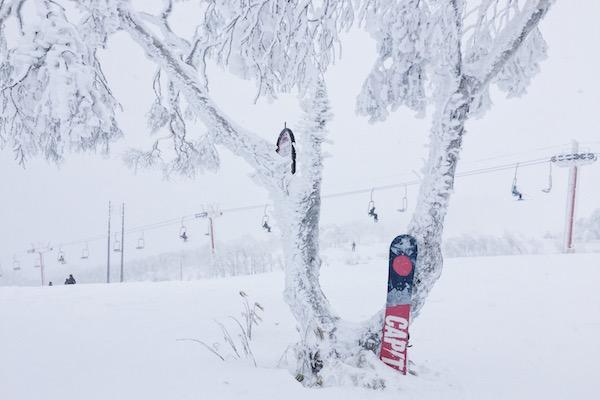 5 bonnes raisons d'aller faire du snowboard au Japon
