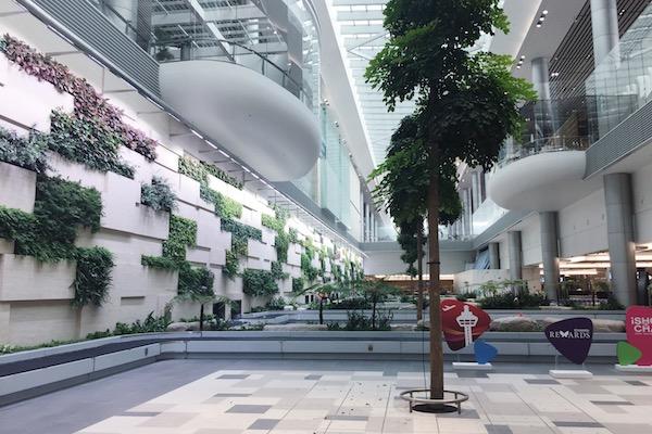 Hall arrivee Changi Terminal 4
