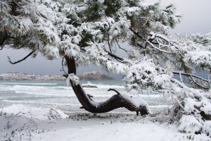 corse neige