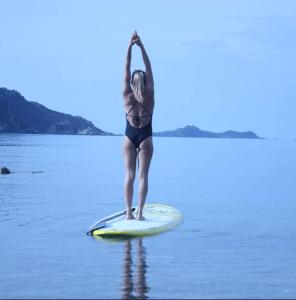 surfit 1