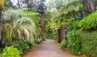 Jardin de Monte