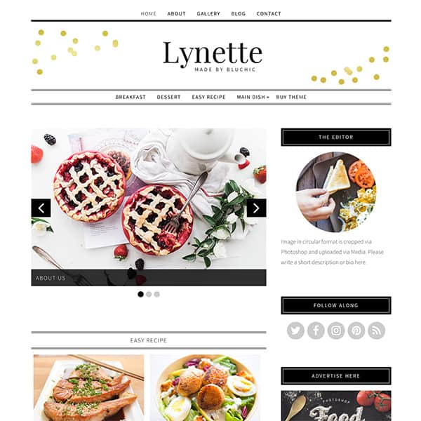 How to start a blog lifestyle finance travel fashion food blogger fitness health beauty beginners easy tutorial Best Theme For Blogs Bluchic Themes Paris Chic Style 4
