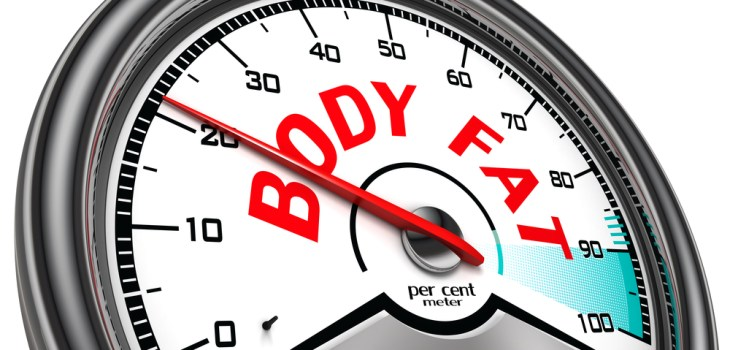 Lose Body Fat Not Muscle mass