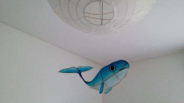 Sujets de décoration Petit Pan