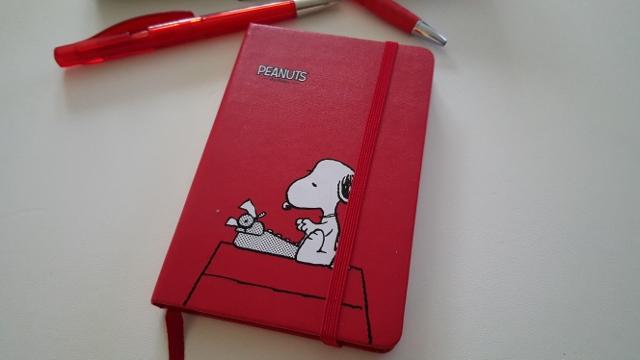 Agenda Peanuts Moleskine (3)