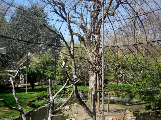 La Ménagerie Le Zoo du Jardin des Plantes (18)