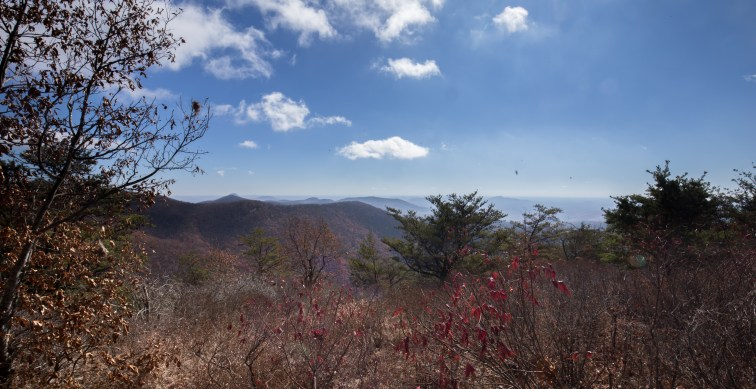 View from Laurel Top
