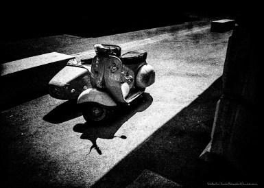 PHOTOS©Fred TROBRILLANT001