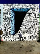 astro-wynwood-miami-photo-todd-mazer