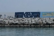 Opiemme, Dolphins, Tribute to Sibilla Aleramo, 2017 (5)