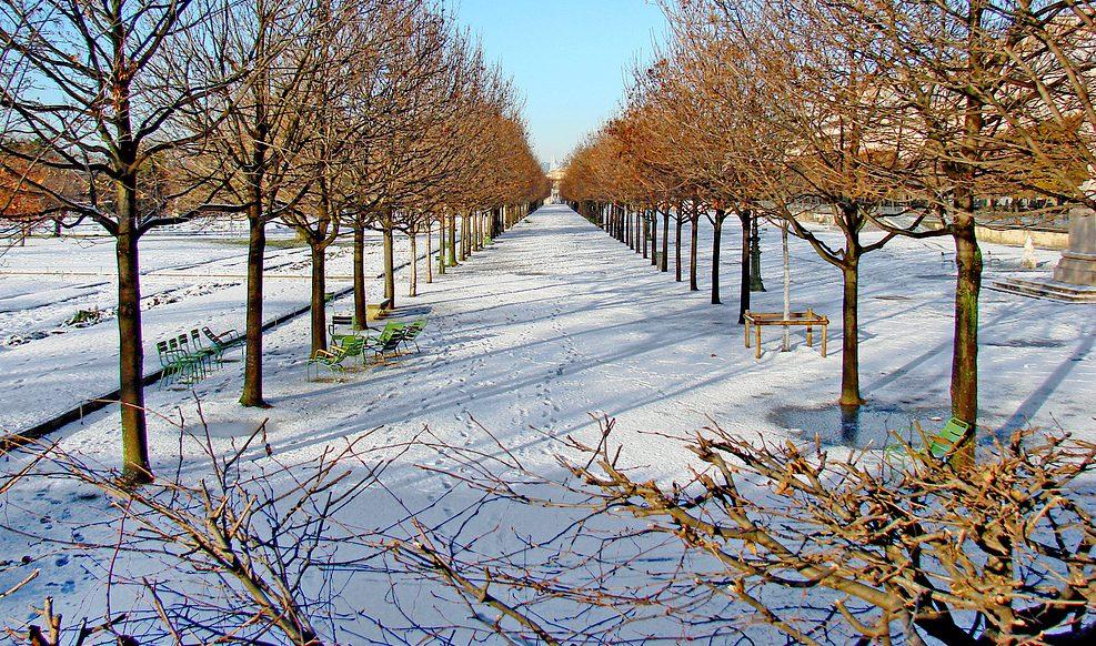 Jardin des Tuileries in Paris during the winter