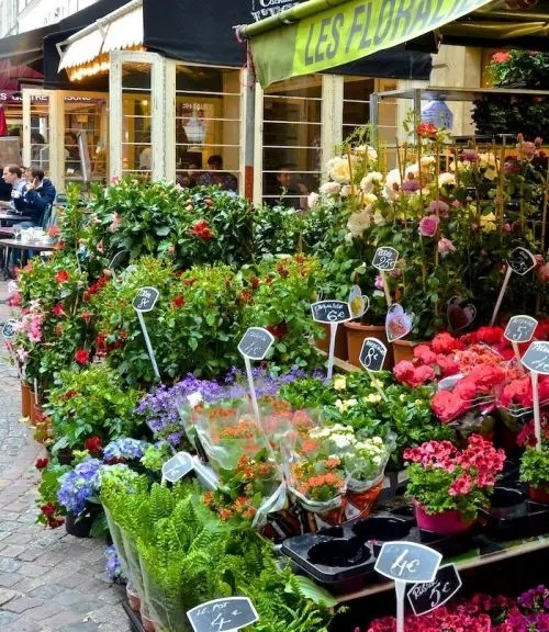 Rue Cler florist paris writing retreats june 2021 itinerary