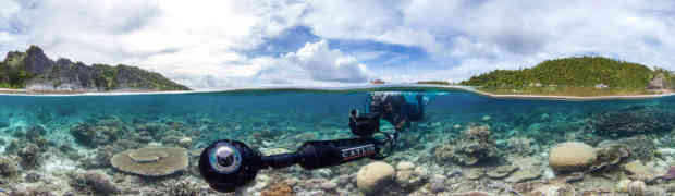 Sundance: Netflix Takes 'Chasing Coral' Doc About the World's Coral Reefs