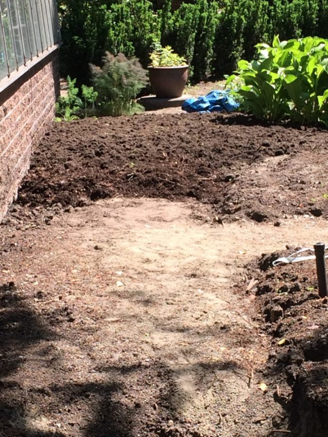 Beautiful new soil added where the original brick path was along the greenhouse