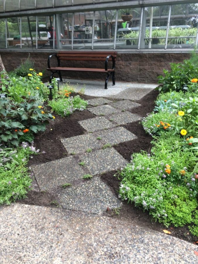 July 19 - the new path is in leading to the new bench by the greenhouse