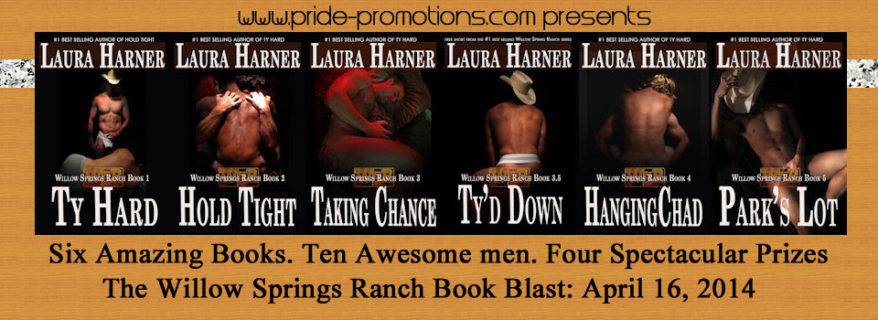 Willow Springs Ranch Series By Laura Harner Parker Williams