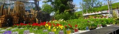 gardencentrebanner
