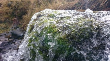 Wasserreich