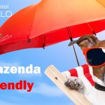 Hotel Fazenda Pet Friendly SP